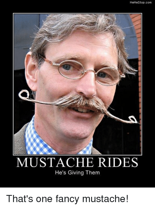 mustache ride: HaHa Stop.com  MUSTACHE RIDES  He's Giving Them That's one fancy mustache!
