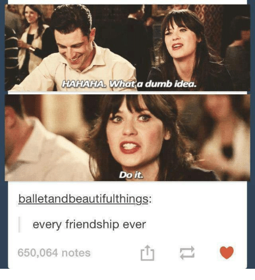Dumb Ideas: HAHAHA What a dumb idea.  Do it.  balletandbeautifulthings:  every friendship ever  650,064 notes