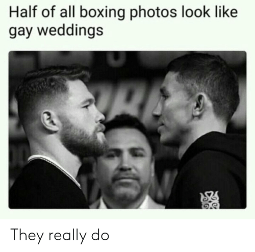 Weddings: Half of all boxing photos look like  gay weddings They really do