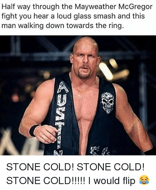 Mayweather, Memes, and Smashing: Half way through the Mayweather McGregor  fight you hear a loud glass smash and this  man walking down towards the ring.  趴 STONE COLD! STONE COLD! STONE COLD!!!!! I would flip 😂