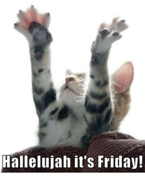 Its Friday: 25+ Best Memes About Hallelujah
