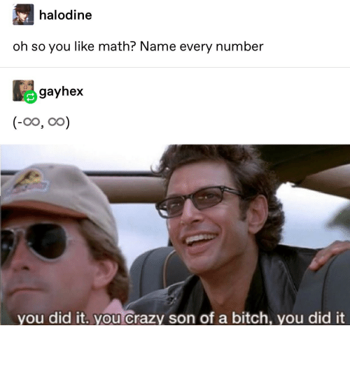 You Crazy: halodine  oh so you like math? Name every number  gayhex  (-0o, oo)  you did it. you crazy son of a bitch, you did it it really do be like that