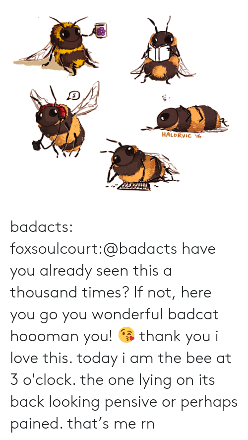 Pained: HALORVIC 6 badacts:  foxsoulcourt:@badacts have you already seen this a thousand times? If not, here you go you wonderful badcat hoooman you! 😘 thank you i love this. today i am the bee at 3 o'clock. the one lying on its back looking pensive or perhaps pained. that's me rn