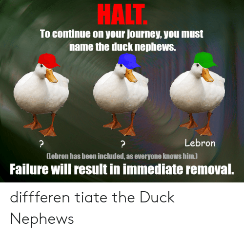 The Duck: HALT  To continue on your journey, you must  name the duck nephews.  Lebron  ?  ?  [Lebron has been included, as everyone knows him.)  Failure will result in immediate removal. diffferen tiate the Duck Nephews