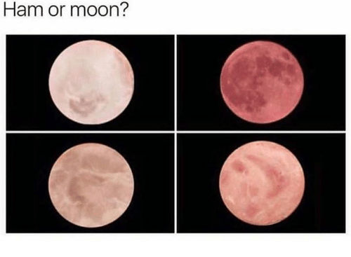 Mooned: Ham or moon?