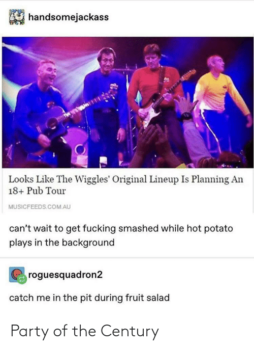 salad: handsomejackass  Looks Like The Wiggles' Original Lineup Is Planning An  18+ Pub Tour  MUSICFEEDS.COM.AU  can't wait to get fucking smashed while hot potato  plays in the background  roguesquadron2  catch me in the pit during fruit salad Party of the Century