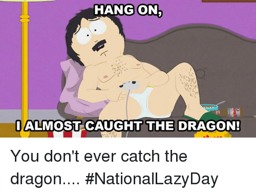 Dank, 🤖, and Dragon: HANG ON  IALMOST CAUGHT THE DRAGON! You don't ever catch the dragon.... #NationalLazyDay
