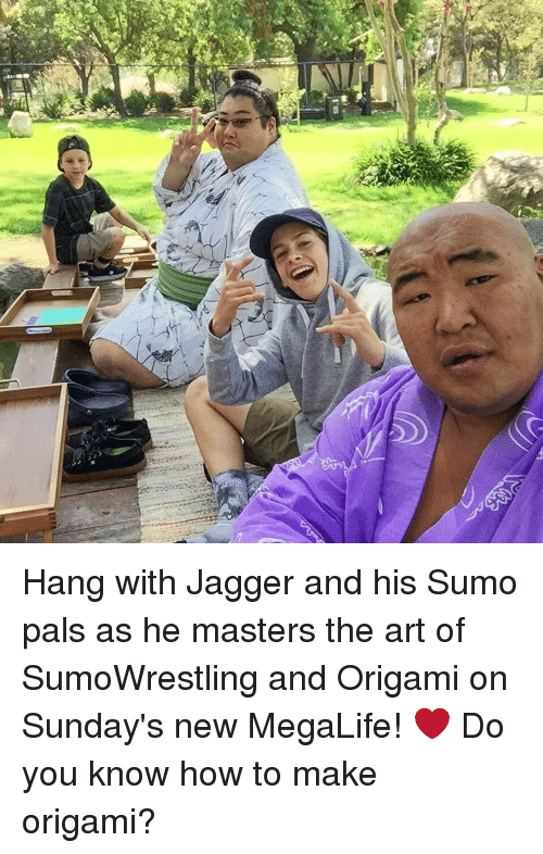 Memes, How To, and Masters: Hang with Jagger and his Sumo pals as he masters the art of SumoWrestling and Origami on Sunday's new MegaLife! ❤️ Do you know how to make origami?