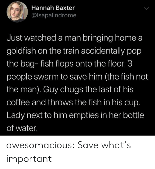 3 People: Hannah Baxter  @lsapalindrome  Just watched a man bringing home a  goldfish on the train accidentally pop  the bag- fish flops onto the floor. 3  people swarm to save him (the fish not  the man). Guy chugs the last of his  coffee and throws the fish in his cup.  Lady next to him empties in her bottle  of water. awesomacious:  Save what's important