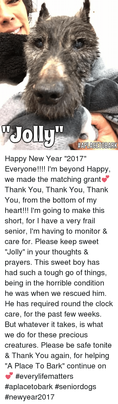 "Clock, Memes, and 2017: HAPLACETOBARK Happy New Year ""2017"" Everyone!!!! I'm beyond Happy, we made the matching grant💕 Thank You, Thank You, Thank You, from the bottom of my heart!!! I'm going to make this short, for I have a very frail senior, I'm having to monitor & care for.  Please keep sweet ""Jolly"" in your thoughts & prayers.  This sweet boy has had such a tough go of things, being in the horrible condition he was when we rescued him.  He has required round the clock care, for the past few weeks.  But whatever it takes, is what we do for these precious creatures. Please be safe tonite & Thank You again, for helping ""A Place To Bark"" continue on💕  #everylifematters #aplacetobark #seniordogs #newyear2017"