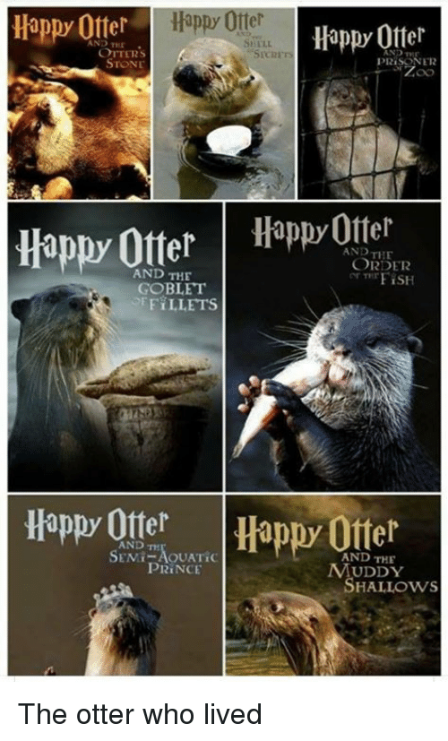Otters: Happ Otterappy Otter  Happy Ofter  AND TEE  OTTERS  STONE  PRISONER  Happy OtterHpOtter  AND THE  ORDER  ar TTrFİSH  AND THE  GOBLET  FiLLETS  Happy OtterHappy Offer  SANDT,AOUATİC  AND THE  UDDY  HALLOWS  PRİNCE The otter who lived