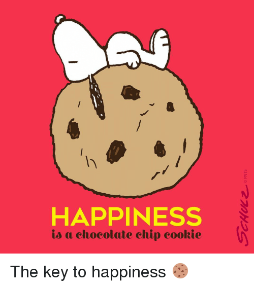 chocolate chip cookies: HAPPINESS  is a chocolate chip cookie The key to happiness 🍪