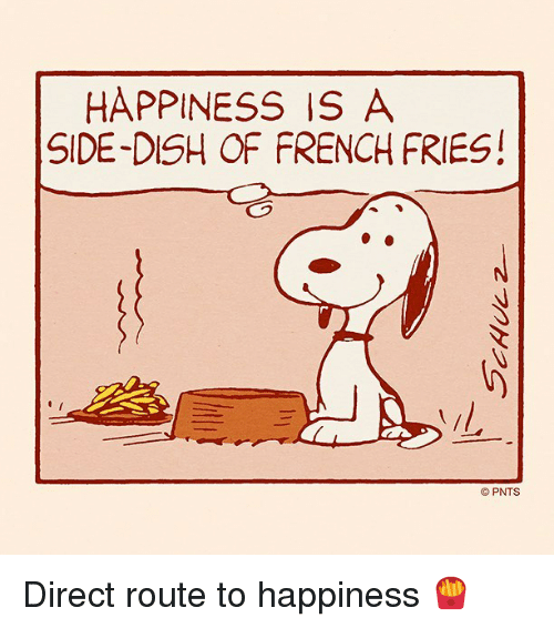 Memes, Dish, and French: HAPPINESS IS A  SIDE-DISH OF FRENCH FRIES!  PNTS Direct route to happiness 🍟