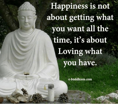 memes: Happiness is not  about getting what  you want all the  time, it's about  Loving what  you have  e-buddhism com