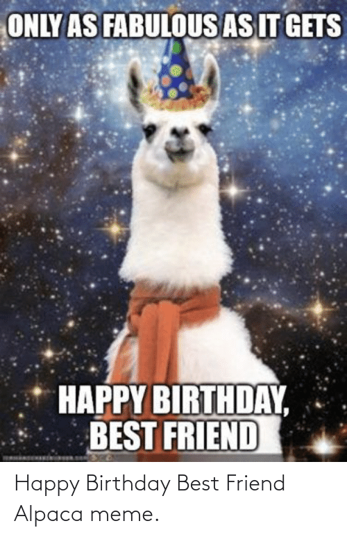 Happy Birthday: Happy Birthday Best Friend Alpaca meme.