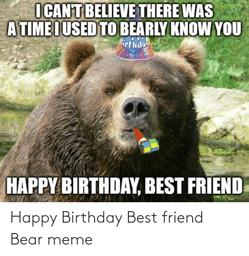 Happy Birthday: Happy Birthday Best friend Bear meme