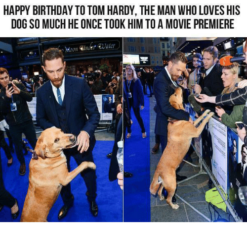 Birthday, Dank, and Dogs: HAPPY BIRTHDAY TO TOM HARDY, THE MAN WHO LOVESHIS  DOG SO MUCH HE ONCE TOOK HIM TO A MOVIE PREMIERE