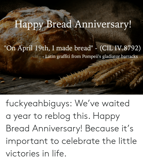 """graffiti: Happy Bread Anniversary  """"On April 19th, I made bread"""" (CIL IV.8792)  Latin graffiti from Pompeii's gladiator barracks fuckyeahbiguys:  We've waited a year to reblog this. Happy Bread Anniversary! Because it's important to celebrate the little victories in life."""