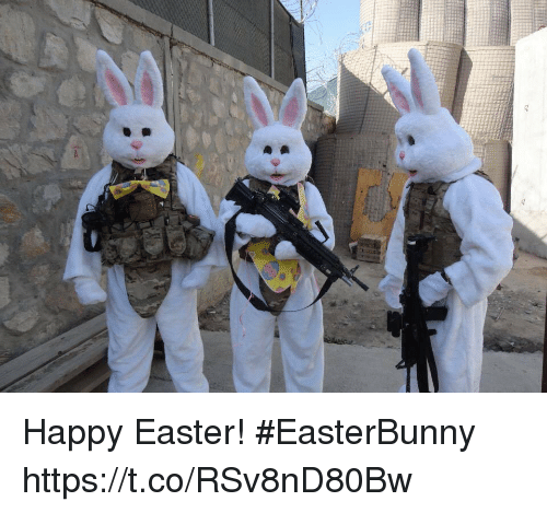 Easter, Memes, and Happy: Happy Easter! #EasterBunny https://t.co/RSv8nD80Bw