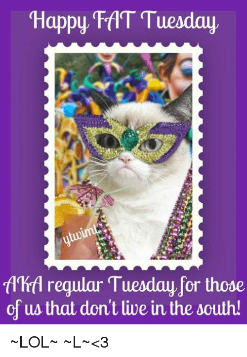 Memes, 🤖, and Fat Tuesday: Happy FAT Tuesday  fdhrfl regular Tuesday for those  of us that dont live in the south ~LOL~ ~L~<3