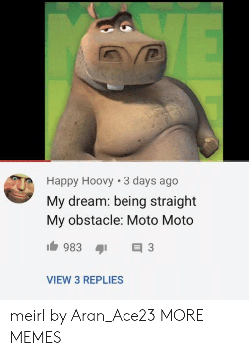 moto: Happy Hoovy 3 days ago  My dream: being straight  My obstacle: Moto Moto  VIEW 3 REPLIES meirl by Aran_Ace23 MORE MEMES