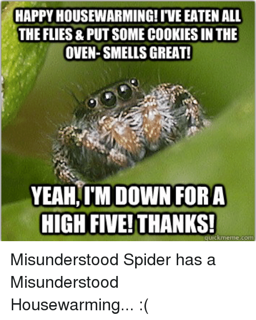happy housewarming ive eaten all the flies put somecookies in the 277297 🔥 25 best memes about misunderstood spider misunderstood,Misunderstood Spider Meme