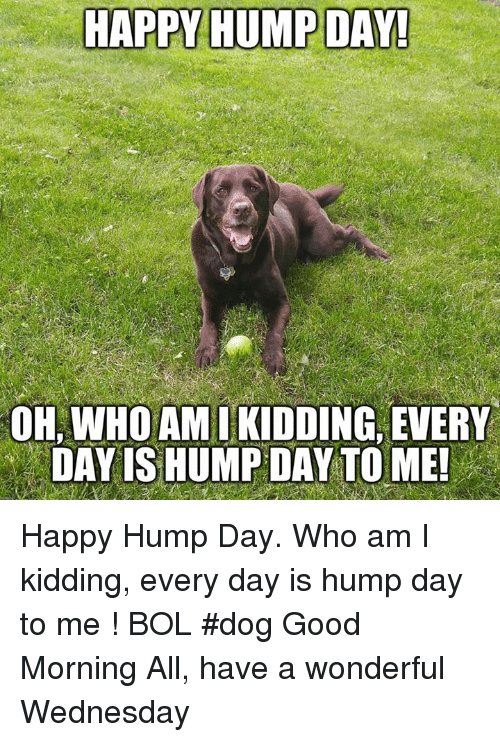 Have A Wonderful Wednesday: HAPPY HUMP DAY!  OH, WHO AMIKIDDING, EVERY  DAY IS HUMP DAY TO ME Happy Hump Day. Who am I kidding, every day is hump day to me !    BOL   #dog Good Morning All, have a wonderful Wednesday