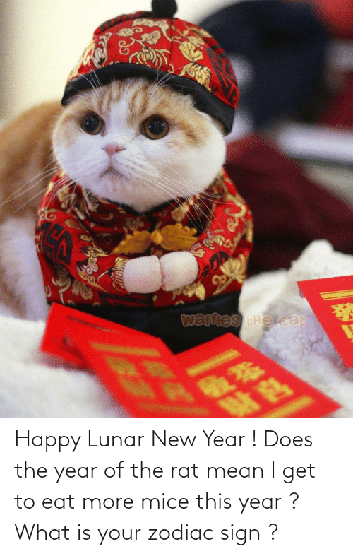 lunar new year: Happy Lunar New Year ! Does the year of the rat mean I get to eat more mice this year ? What is your zodiac sign ?