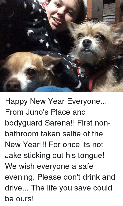 Dont Drink And Drive: Happy New Year Everyone... From Juno's Place and bodyguard Sarena!!  First non-bathroom taken selfie of the New Year!!! For once its not Jake sticking out his tongue!  We wish everyone a safe evening. Please don't drink and drive... The life you save could be ours!