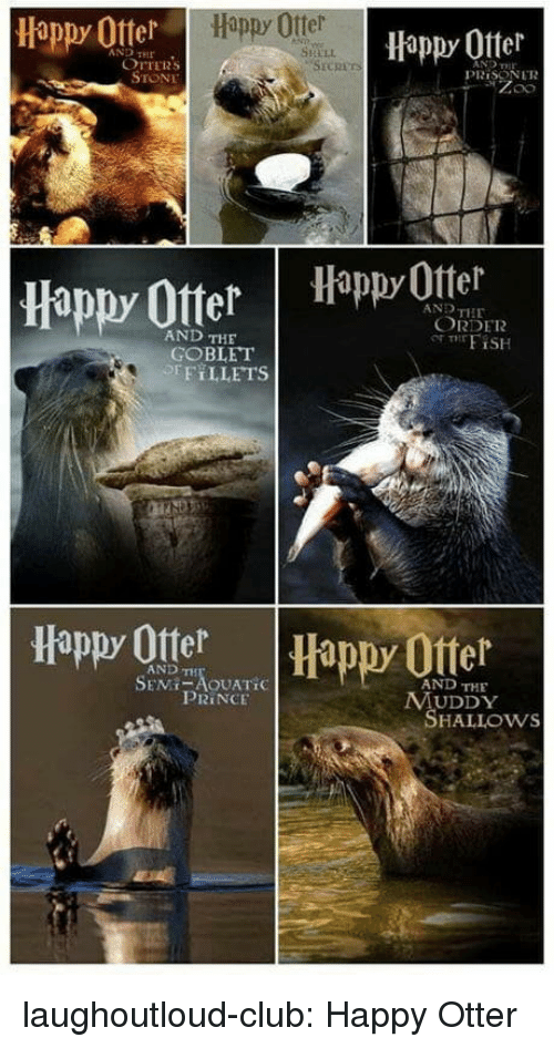 Otters: Happy Otter  Happy Ofter  AND HE  SHELL  OTTERS  STONE  PRİSON LTR  Happy OtterHappyOttel  AND THE  ORDER  AND THE  GOBLET  EFT LLETS  Happy Otter  Happy Ofter  AND TH  AND THE  PRINCE  MUDDY  SHALLOws laughoutloud-club:  Happy Otter