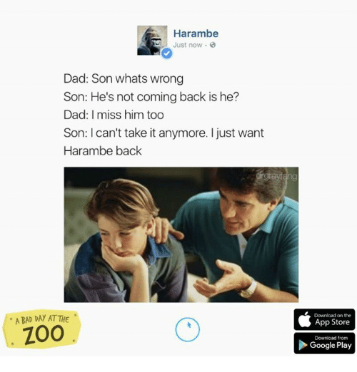 cant take it anymore: Harambe  Just now o  Dad: Son whats wrong  Son: He's not coming back is he?  Dad: miss him too  Son: I can't take it anymore. I just want  Harambe back  ABAD DAY ATTHE  ZOO  Download on the  App Store  Download from  Google Play