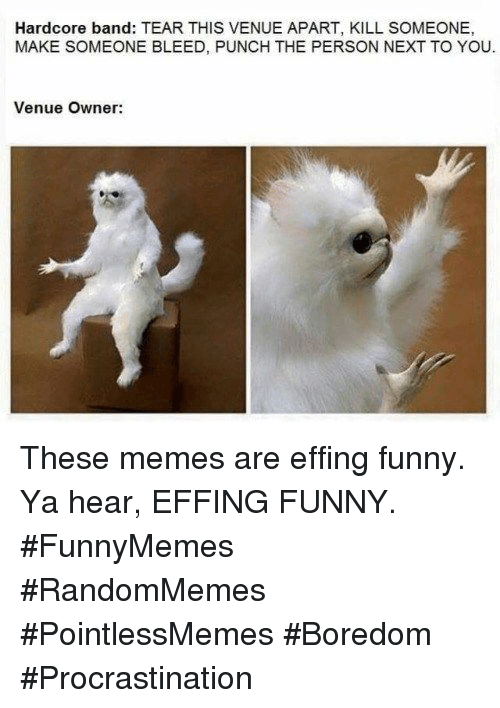 venue: Hardcore band: TEAR THIS VENUE APART, KILL SOMEONE,  MAKE SOMEONE BLEED, PUNCH THE PERSON NEXT TO YOU  Venue Owner: These memes are effing funny. Ya hear, EFFING FUNNY. #FunnyMemes #RandomMemes #PointlessMemes #Boredom #Procrastination