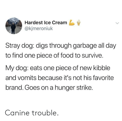 One Piece: Hardest Ice Cream  @kjmeroniuk  Stray dog: digs through garbage all day  to find one piece of food to survive.  My dog: eats one piece of new kibble  and vomits because it's not his favorite  brand. Goes on a hunger strike. Canine trouble.