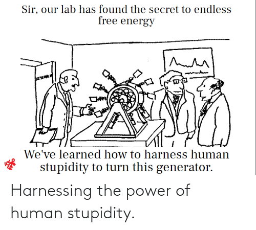 Stupidity: Harnessing the power of human stupidity.