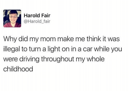 Dank, Driving, and Mom: Harold Fair  @Harold_fair  Why did my mom make me think it was  illegal to turn a light on in a car while you  were driving throughout my whole  childhood