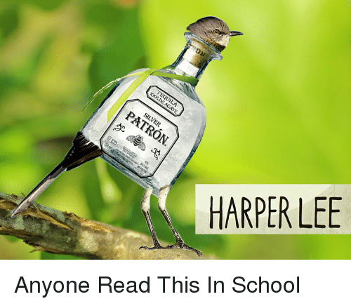 Funny, School, and Harper Lee: HARPER LEE Anyone Read This In School