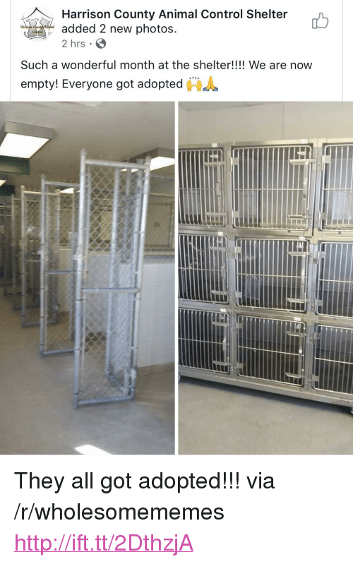 "Control, Animal, and Http: Harrison County Animal Control Shelter  added 2 new photos  2 hrs  Har  Such a wonderful month at the shelter!!!! We are now  ""  empty! Everyone got adopted  鲁 <p>They all got adopted!!! via /r/wholesomememes <a href=""http://ift.tt/2DthzjA"">http://ift.tt/2DthzjA</a></p>"