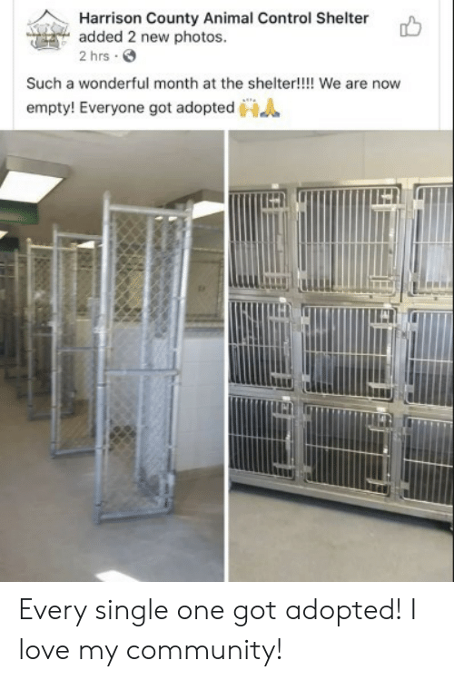 Harrison: Harrison County Animal Control Shelter  added 2 new photos.  2 hrs  Such a wonderful month at the shelter!!!! We are now  empty! Everyone got adopted Every single one got adopted! I love my community!