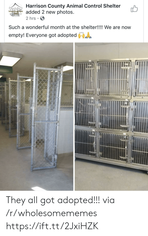 Harrison: Harrison County Animal Control Shelter  added 2 new photos  2 hrs  Harrison Countyatimal  Conthol  Such a wonderful month at the shelter!!!! We are now  empty! Everyone got adopted They all got adopted!!! via /r/wholesomememes https://ift.tt/2JxiHZK