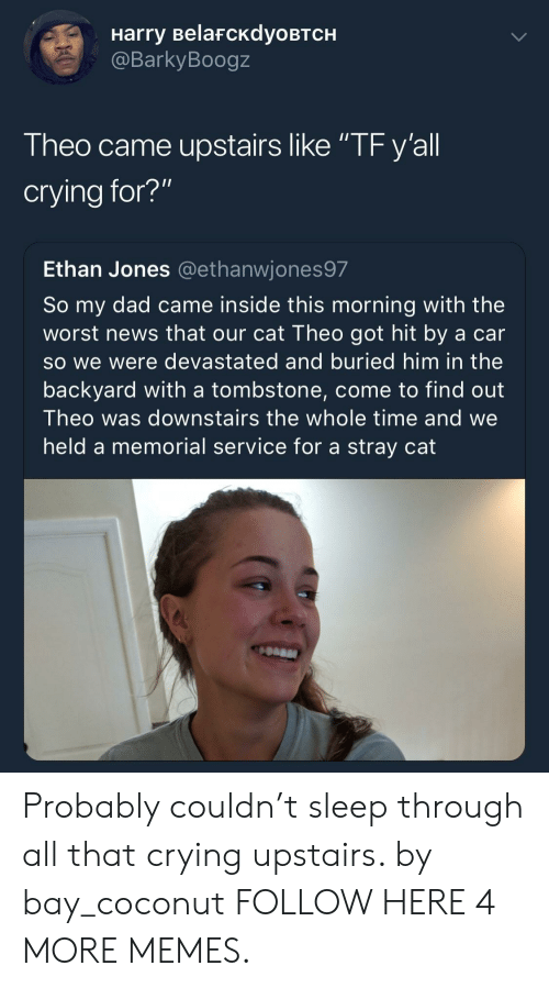 """tombstone: Harry BelafcKdyoBTCH  @BarkyBoogz  Theo came upstairs like """"TF y'all  crying for?""""  Ethan Jones @ethanwjones97  So my dad came inside this morning with the  worst news that our cat Theo got hit by a car  so we were devastated and buried him in the  backyard with a tombstone, come to find out  Theo was downstairs the whole time and we  held a memorial service for a stray cat Probably couldn't sleep through all that crying upstairs. by bay_coconut FOLLOW HERE 4 MORE MEMES."""