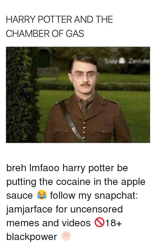 Apple, Memes, and Snapchat: HARRY POTTER AND THE  CHAMBER OF GAS breh lmfaoo harry potter be putting the cocaine in the apple sauce 😂 follow my snapchat: jamjarface for uncensored memes and videos 🚫18+ blackpower ✊🏻
