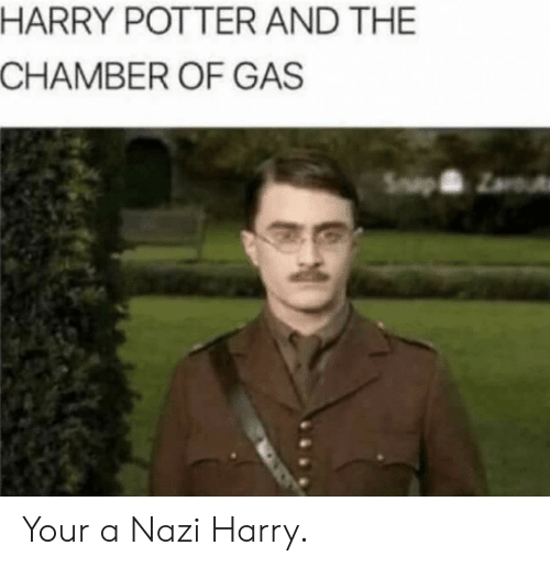 chamber: HARRY POTTER AND THE  CHAMBER OF GAS Your a Nazi Harry.