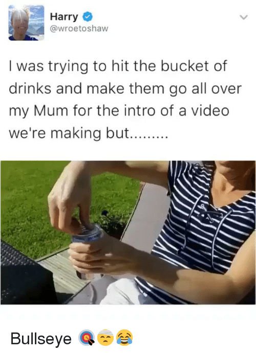 Video, Girl Memes, and Harry: Harry  @wroetoshaw  I was trying to hit the bucket of  drinks and make them go all over  my Mum for the intro of a video  we're making but.... Bullseye 🎯🤕😂
