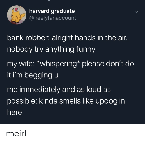 Hands In: harvard graduate  @heelyfanaccount  bank robber: alright hands in the air.  nobody try anything funny  my wife: *whispering* please don't do  it i'm begging u  me immediately and as loud as  possible: kinda smells like updog in  here meirl