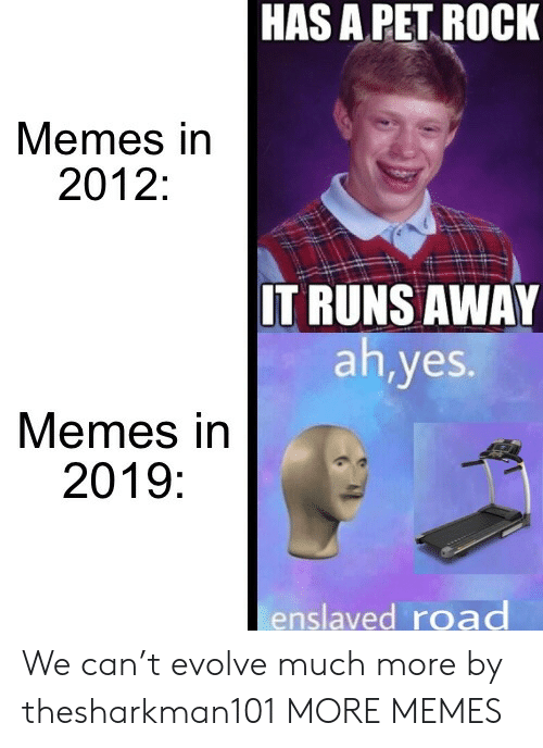 Runs Away: HAS A PET ROCK  Memes in  2012:  IT RUNS AWAY  ah,yes.  Memes in  2019:  enslaved road We can't evolve much more by thesharkman101 MORE MEMES