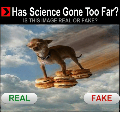 cloning has science gone too far Dr ian wilmut essay examples 8 total results an introduction to the advantages and disadvantages of cloning  cloning: has science gone too far 1,326 words 3.