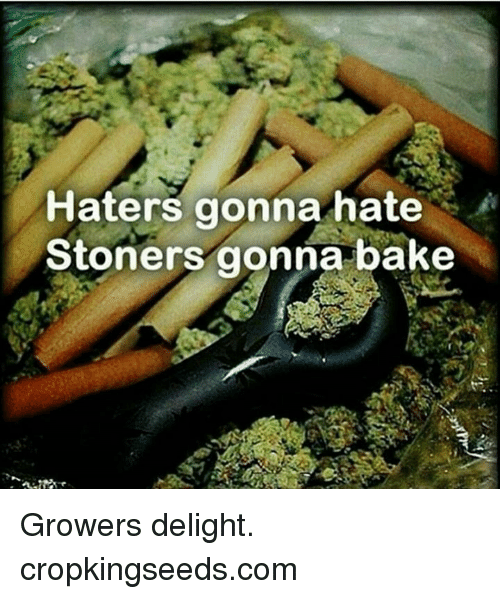 Hater Gonna Hate: Haters gonna hate  A  Stoners gonna bake Growers delight.  cropkingseeds.com