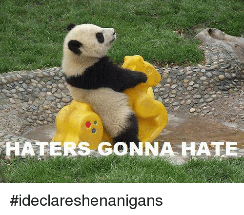 Hater Gonna Hate: HATERS GONNA HATE #ideclareshenanigans
