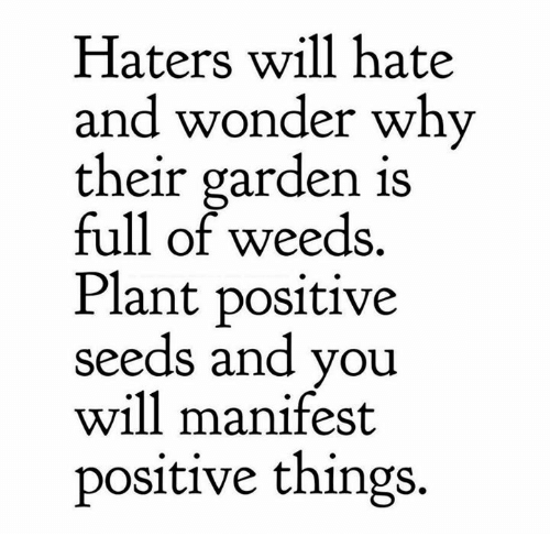 Haters Will Hate