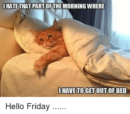 Hello Friday: HATETHAT PARTOFTHE MORNING WHERE  HAVE TOGET OUT OF BED Hello Friday ......
